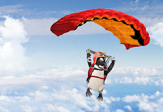 Percy Penguin sky diving
