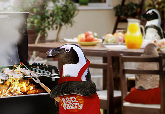 Penguin family having a BBQ